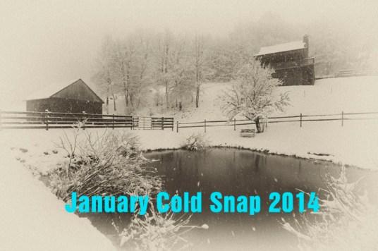 09_03_01_snowy_farm_horses
