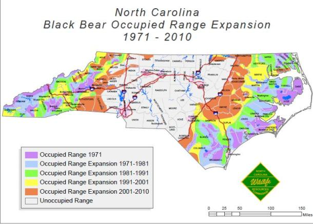 Expansion Map Bears