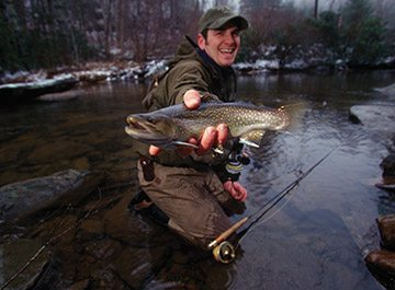 From June 6 until Sept. 30, anglers fishing in delayed harvest trout waters can keep up to seven trout per day — with no bait restrictions and no minimum size limits.
