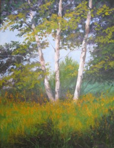 Birches - Oil on Canvas by Kevin Beck