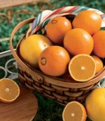 Merritt_Isl_Navel_Oranges_DP