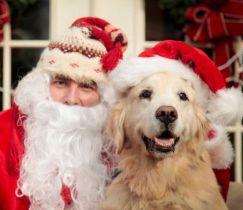 Santa and Goldie