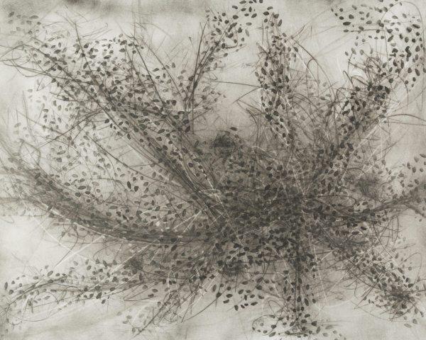 swarm-2015-mfinlayson