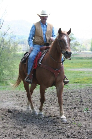 Keith Ward sitting on a fine looking horse. Photo courtesy of Dutch Creek Trail's website
