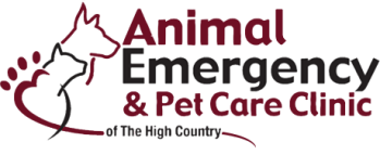 animal-logo
