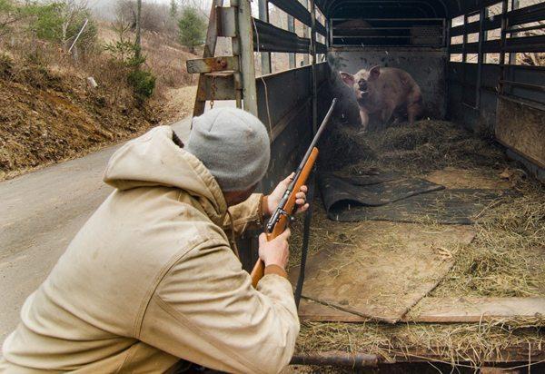 """Killing Hog"" by James K. Fay"