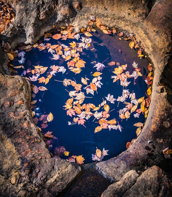 """""""Rock, Water, Leaves"""" by Robert Vance"""