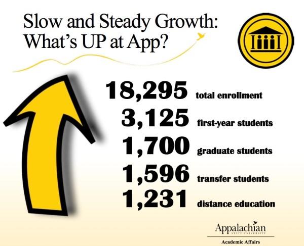 steady-growth