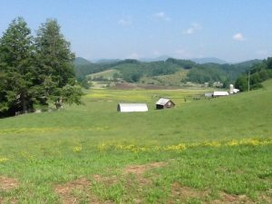 The Cooper farm that is part of the Voluntary Farmland Preservation Program in Ashe and Watauga County.