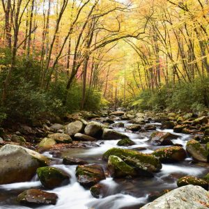 Ray's Weather Announces Photography Winners for 2022 Blue Ridge Calendars
