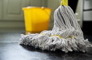 3 Essential Products for Keeping Your Home and Business Clean