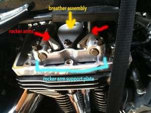 Harley Davidson Evo Engine Torque Specs  impremedia