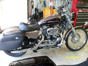 05' Sportster 1200 Custom For Sale  Harley Davidson Forums