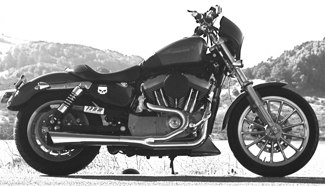 2 into 1 exhaust pictures harley