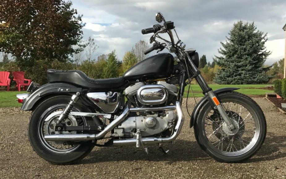 Transforming a Sportster into a Bobber - Harley Davidson Forums
