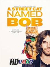 A Street Cat Named Bob 2016 in HD English Full Movie