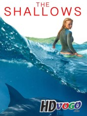 The Shallows 2016 in HD English Full Movie