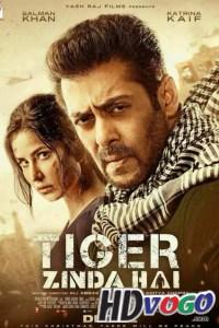 Tiger Zinda Hai 2017 in HD Hindi Full Movie