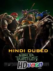 Teenage Mutant Ninja Turtles 2014 in HD Hindi Dubbed Full Movie