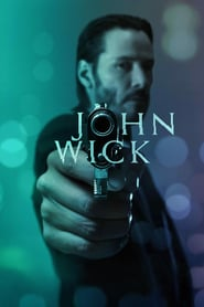 John Wick Hindi Dubbed