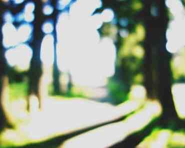 Blurred Landscape 1
