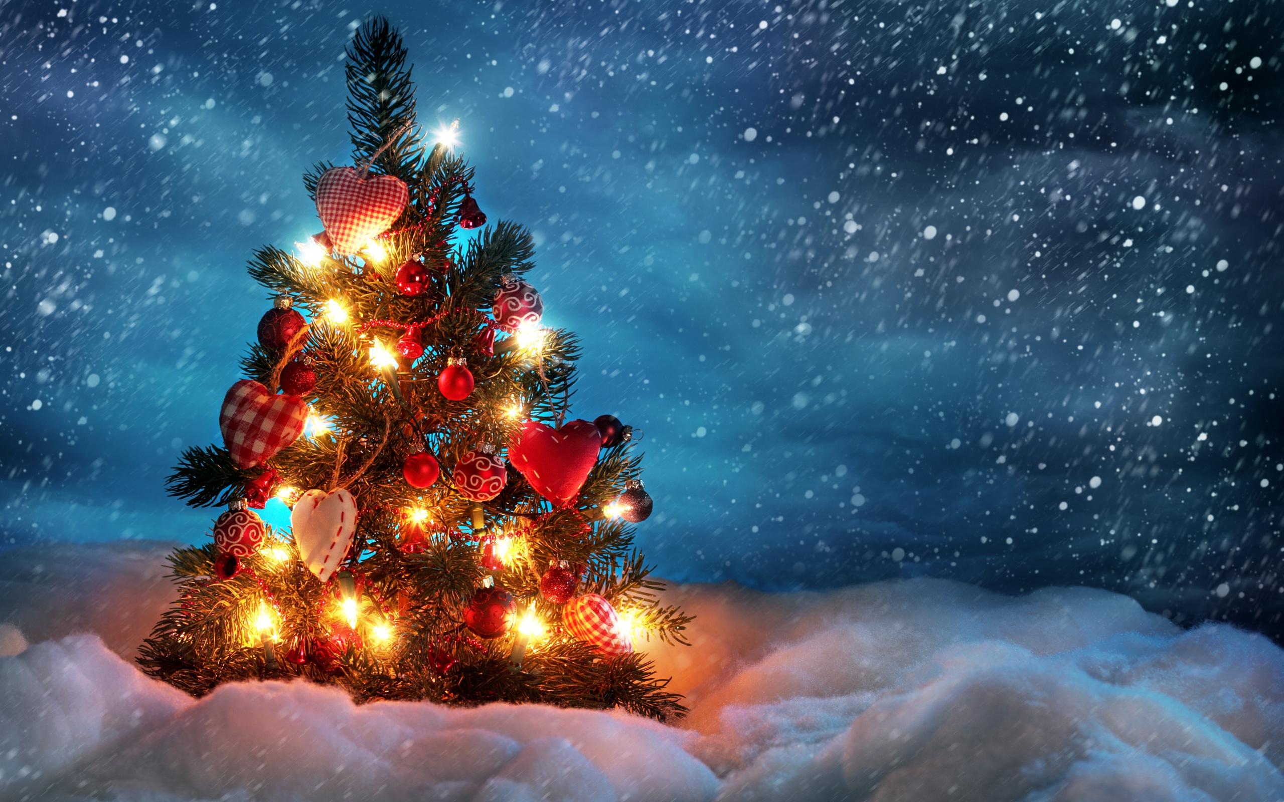 Um Feliz Natal e um Ótimo Ano Novo!