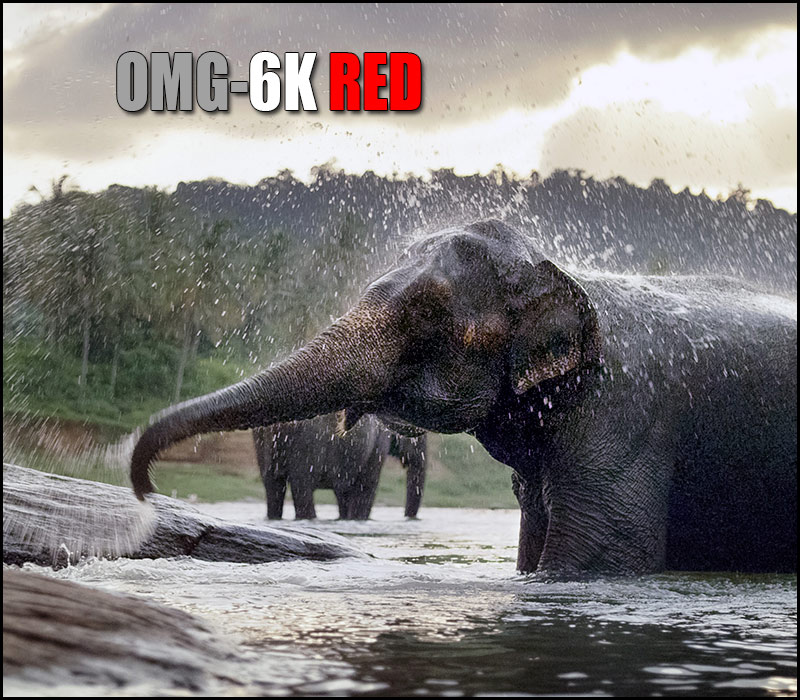 6K-RED