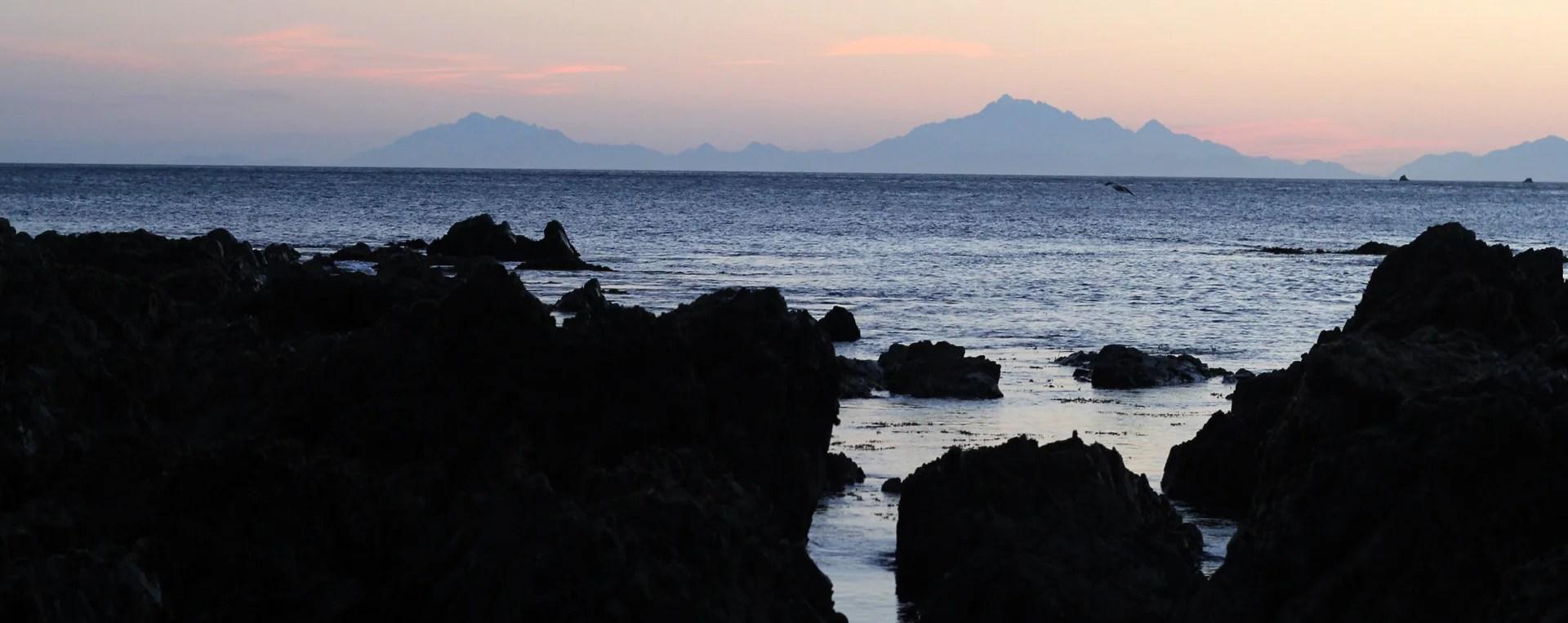 TUATARA-_landscape2