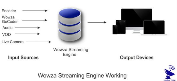 Wowza Streaming Engine? How It Works & Features & supported
