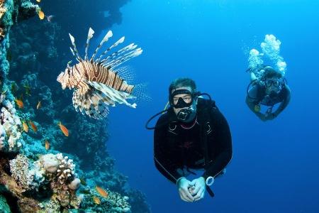Tioman Scuba diving