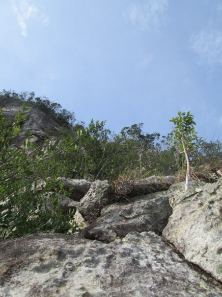 Summit of Damai Sentosa and the path to the top