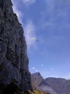 Paraglider soaring above Lion's head
