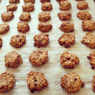 Frollini Vegan - Vegan Breakfast Cookies with Crunchy Oats, Chocolate Chips and Chia Seeds - 3
