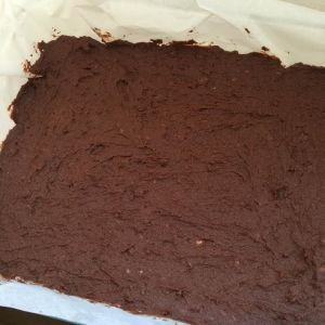 [cml_media_alt id='3241']brownie2[/cml_media_alt]