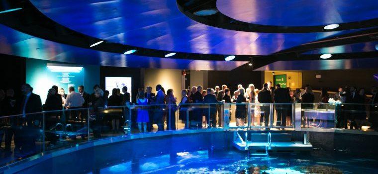 Grades 1-4 to New England Aquarium