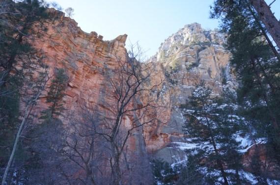 Pääasiassa reitti kulkee kanjonin pohjalla metsässä.