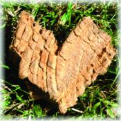 Heart-shaped Wood