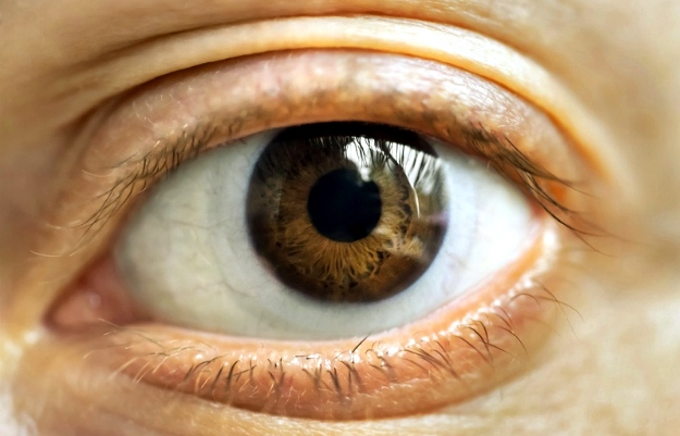 CAN-C | Contemporary Treatment Of Cataracts You Need To Take Note Of
