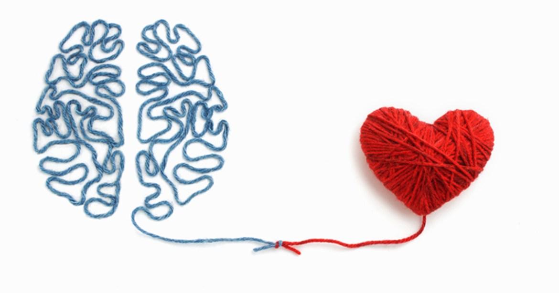 Heart Brain 2019 Adobe