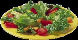 Fresh organic salad every day