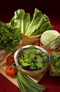 Magnesium - Organic leafy greens