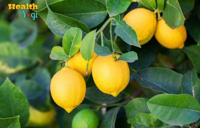 Lemon On Face For Acne
