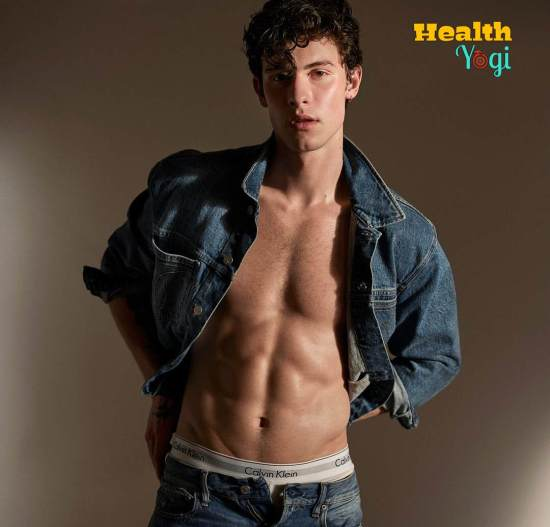 Shawn Mendes Workout Routine and Diet Plan