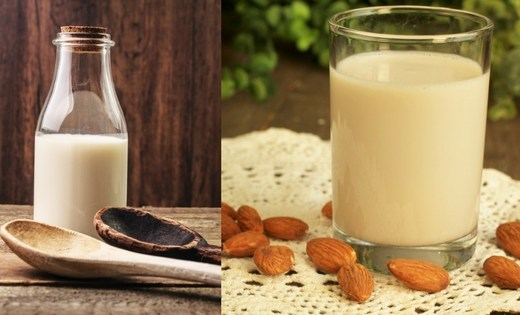 homemade milk alternatives
