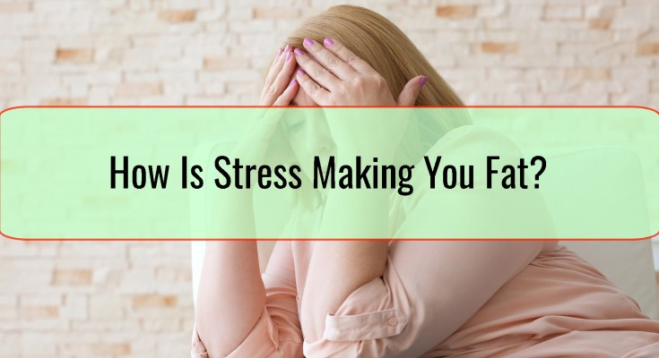 How Is Stress Making You Fat