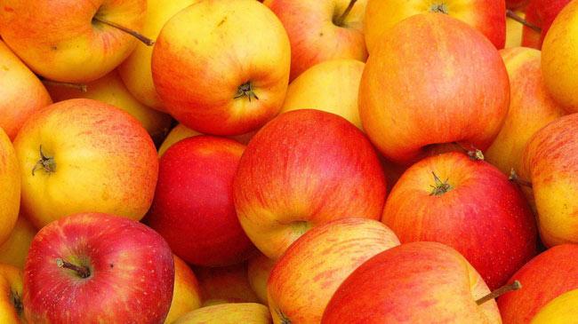 Health benefits of apples