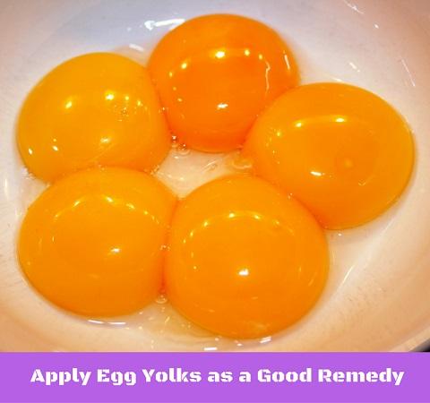 Apply Egg Yolks