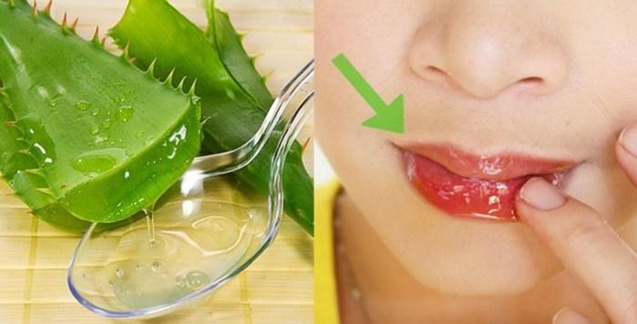 Aloe Vera for Chapped Lips