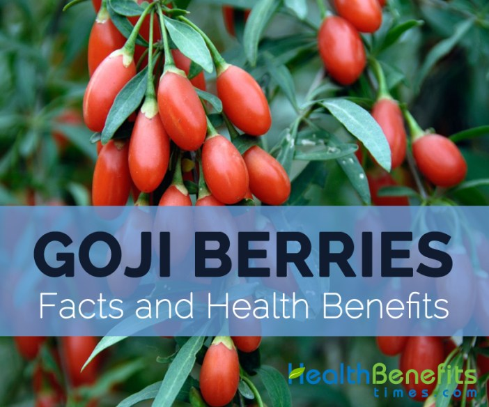 Goji-berry-facts-and-health-benefits