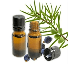 Health Benefits of Juniper Berry Essential Oil